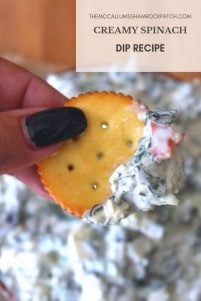 This deliciously Creamy Spinach Dip pairs so well with your favorite crackers, crunchy tortillas, crusty bread, or even thick-cut potato chips; it makes it perfect for any potluck or gathering. A simple to makedip recipe, with fresh ingredients, that will have your guests asking you for this delicious appetizer recipe immediately after one bite.