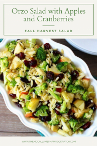 Orzo Salad with Apples and Cranberries {Fall Harvest Orzo Salad} is a simple deliciouslyFall inspired Salad that is perfect for all occasions.